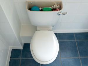Interior of a toilet flush tank